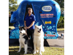 Blue Wheelers - Mobile Dog Wash, Mobile Dog Groom - All States