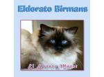 El Dorato Birmans - Birman Breeders Aust - Melbourne, Victoria
