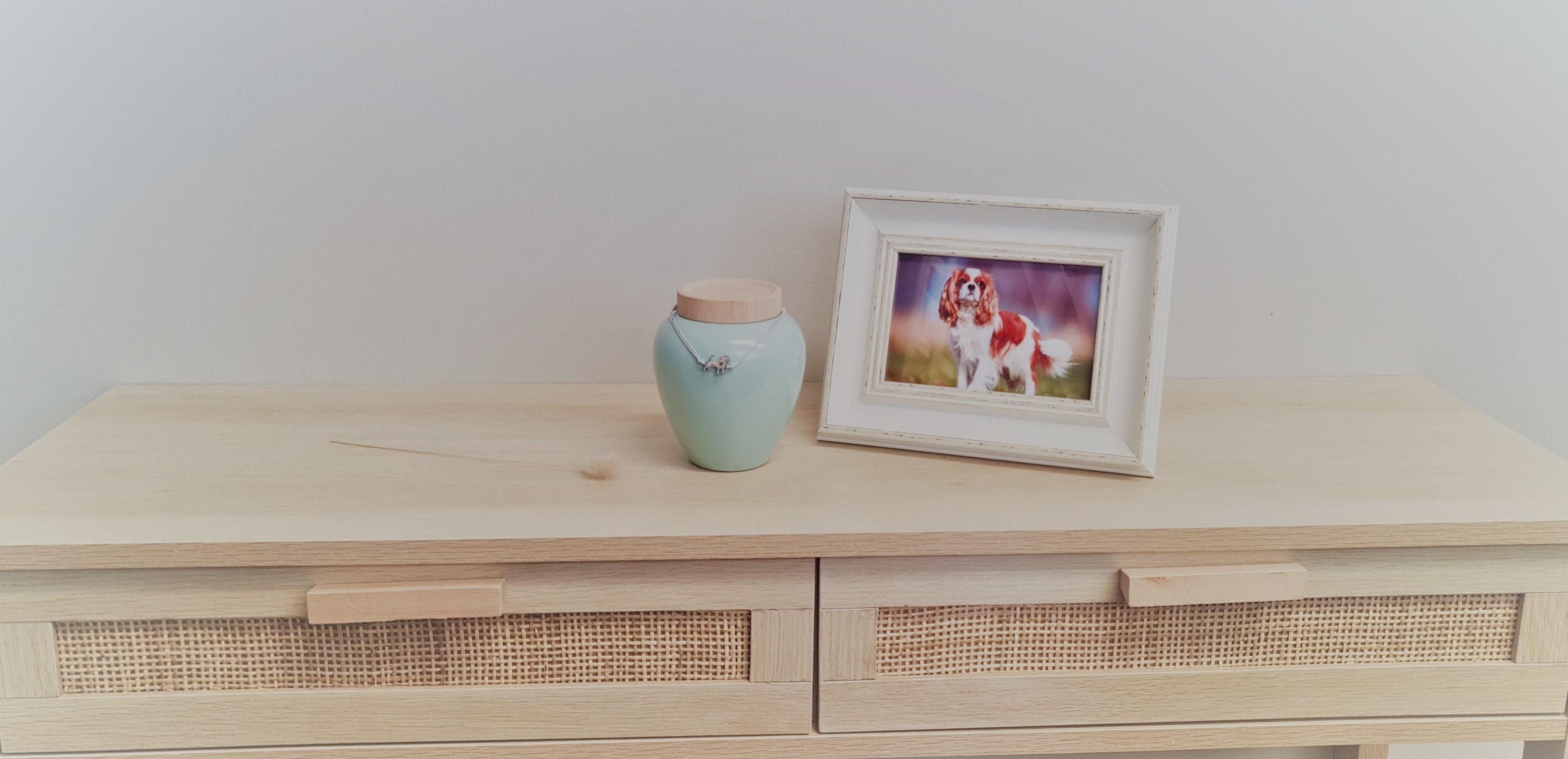 Urns & Memorials for your beloved dog gallery image