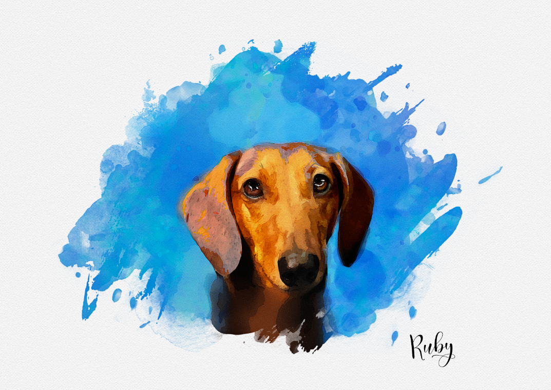 Custom Pet Portraits - Paws for Giving - Ruby gallery image