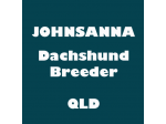 Johnsanna - Dachshund Breeder - QLD