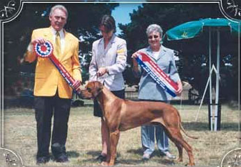 Sam wins Best in Show gallery image