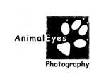 Animal Eyes Pet Photography - Sydney