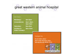 Great Western Animal Hospital - Vet, Cat Boarding, Puppy Pre-school - Sydney