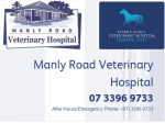 Manly Road Veterinary Hospital - Brisbane