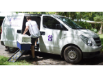 Pet Transfer - Pet Taxi,  Ambulance - Ballina to Brisbane and Beyond!