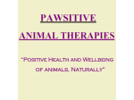 Pawsitive Animal Therapies - Melbourne