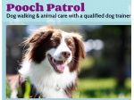 Pooch Patrol - Dog Walking and Obedience, Pet Minding - Melbourne