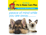 Southside Pet and Home Care - Pet Minding Brisbane - Redlands, Bay, South Brisbane
