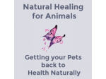 Natural Healing For Animals - Australia wide