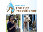 The Pet Practitioner - Maroubra