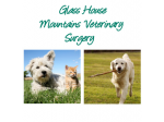 Glass House Mountains Vet Surgery