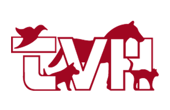Tamworth Veterinary Hospital - 02 6766 3988