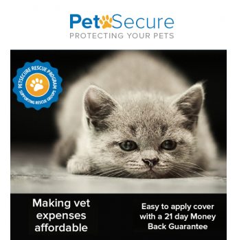Petsecure - Pet Insurance for Cats and Dogs