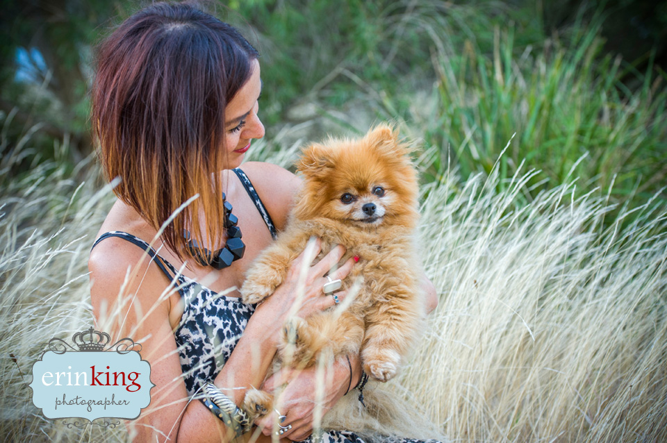 Pomeranian Pet Photography gallery image
