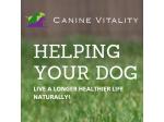 Canine Vitality - Canine Naturopathy Service - Cedar Grove