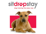 Sitdropstay - Dog Behaviour And Training Specialists -