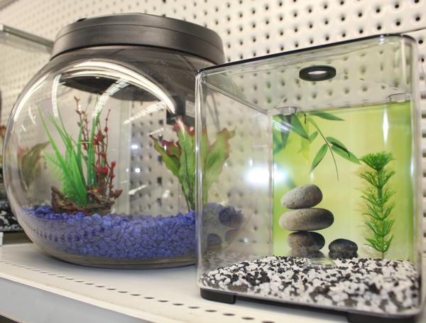 Fish Tanks gallery image