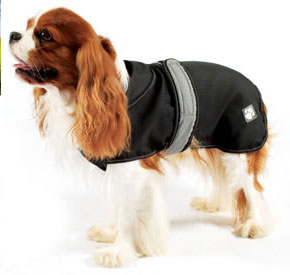 Dog Coats gallery image