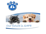 Safe Bunbury - Pet Rescue, Pet Adoption - Bunbury, WA