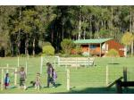Diamond Forest Farm Stay - South West, Western Australia - WA