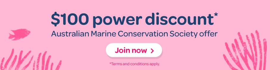 australian marine conservation society offer