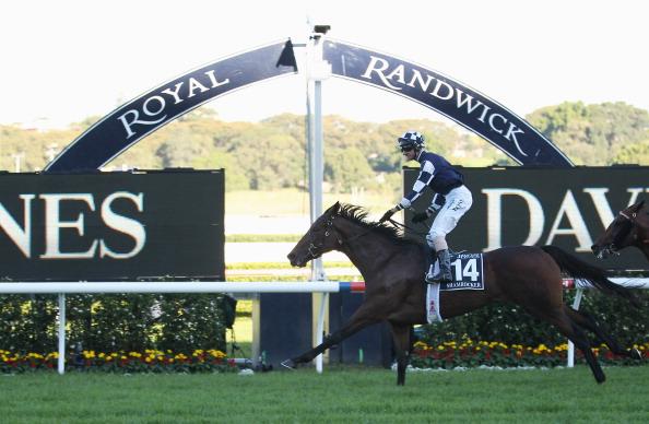 Glen Boss up in his irons as Shamrocker wins the 2011 Australian Derby