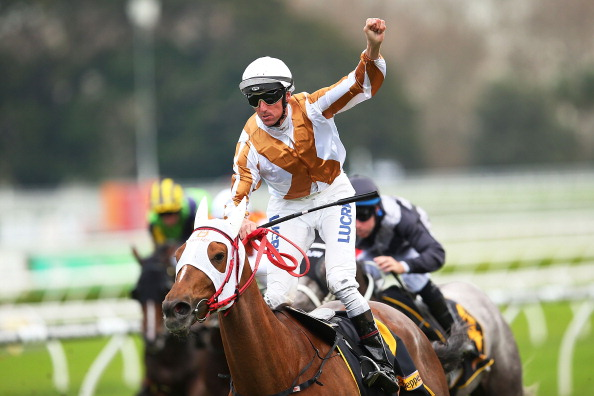 Japanese galloper Hana's Goal wins the 2014 All Aged Stakes
