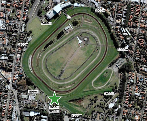 Sydney Cup - Randwick 3200m start