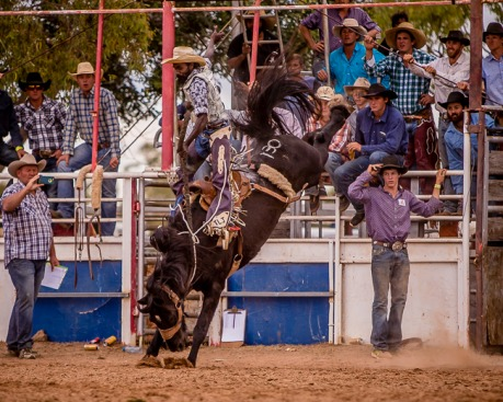 Normanton Rodeo 2017