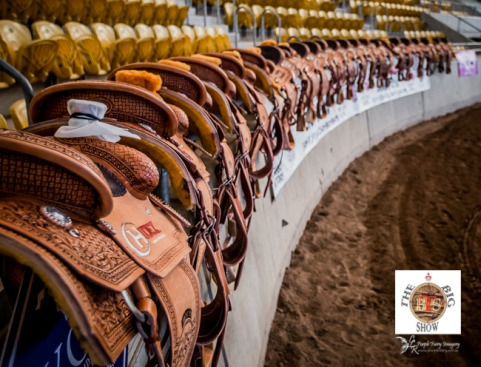The Mitsubishi Big Show Team Roping Championships 2017