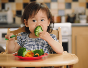 Toddler eating broccoli