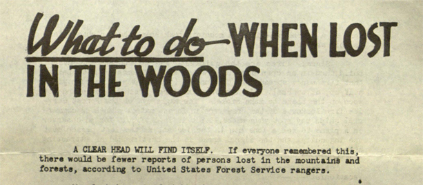 whatwhenlostwoods