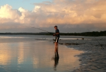Solace, Fraser Island NP