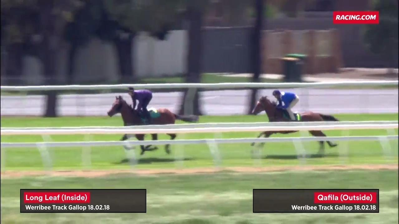 Diamond Pair Gallop At Werribee