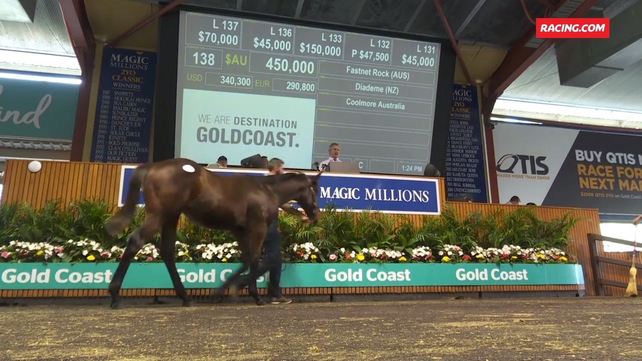 Magic Millions Weanling Sale - Day 1 Wrap