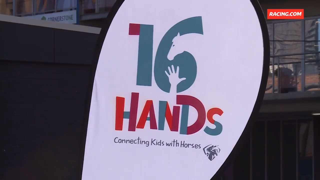 16 Hands program launches
