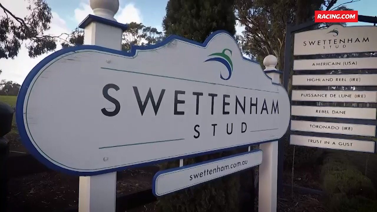 2018 Swettenham Stud Open Day