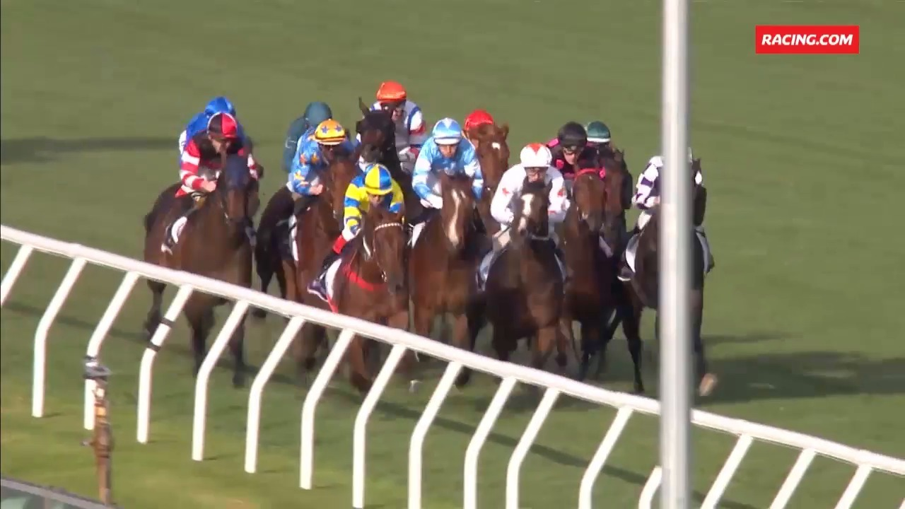 The Wrap: Spring Carnival - 13.12.18