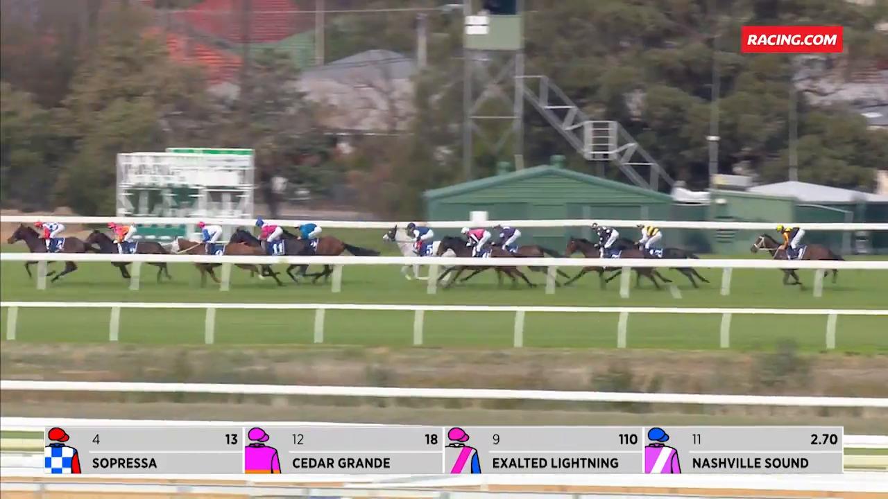 Azurite (IRE) - Race Horse Profile RACING COM