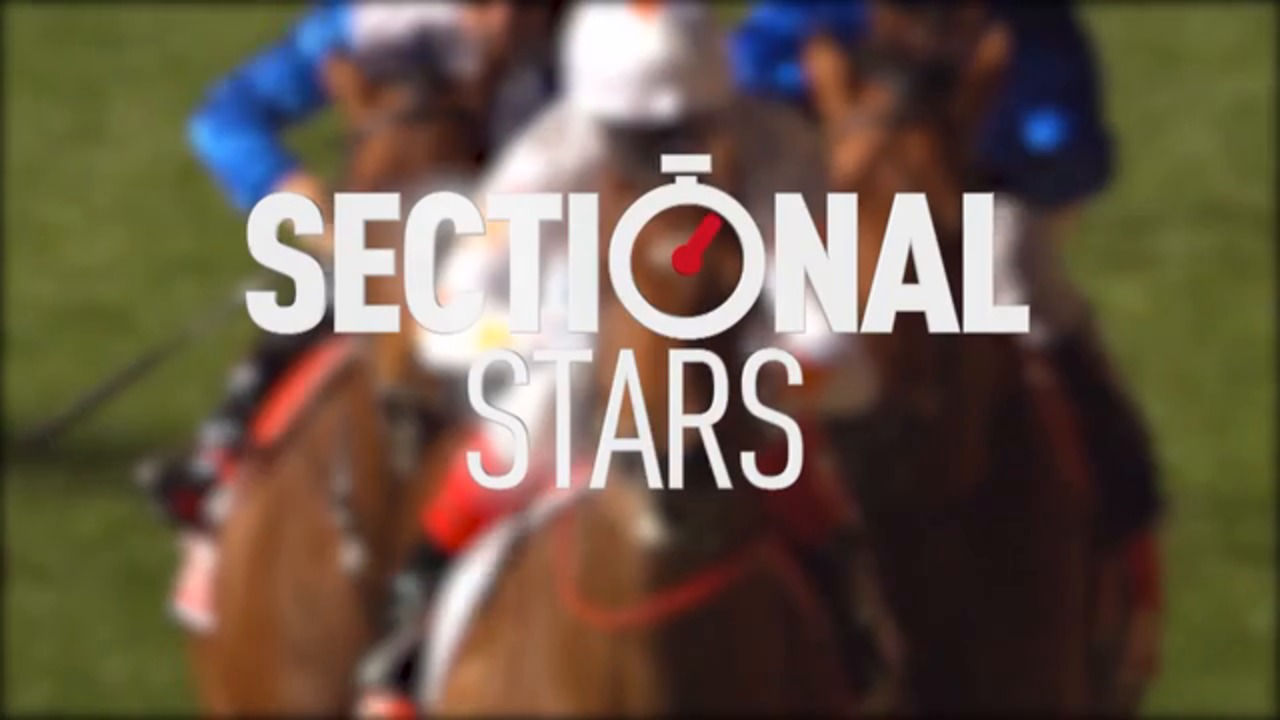 Sectional Stars - 07.04.20