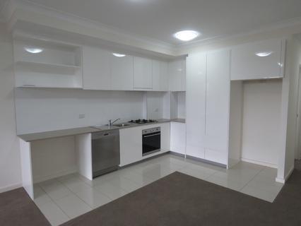 303/10 Hope Street, Rosehill NSW 2142-1