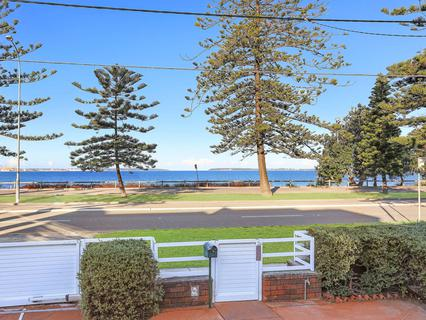 205 The Grand Parade, Monterey NSW 2217-1