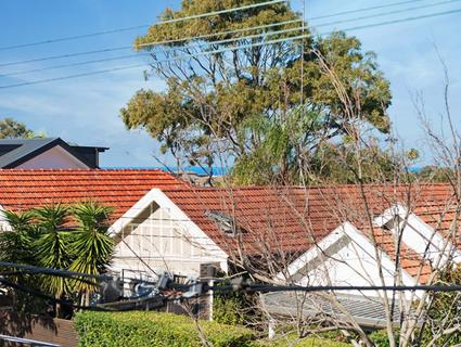 8 Barclay Street Waverley NSW 2024-1