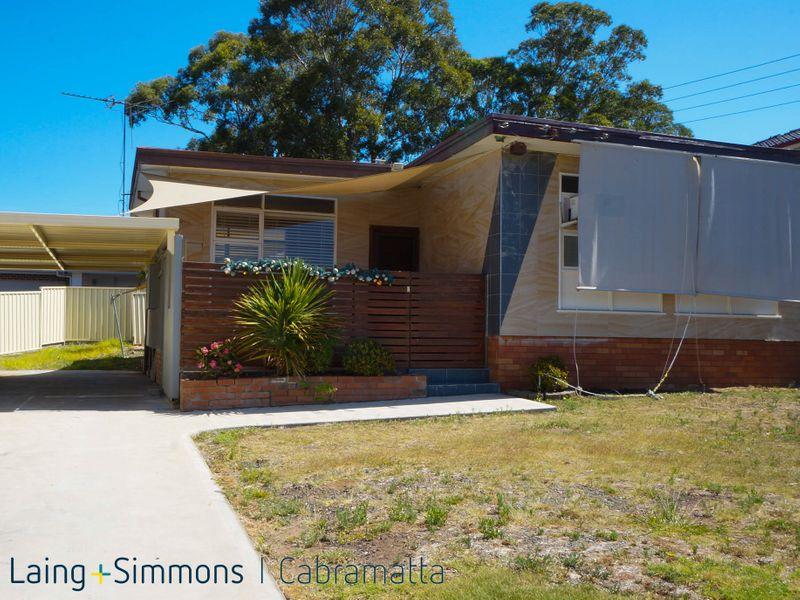 40 Pritchard Street, MOUNT PRITCHARD NSW 2170-1