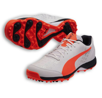 a3f5685ab26043 Puma Evospeed Cricket Shoes Online ✓ Shoes Style 2018