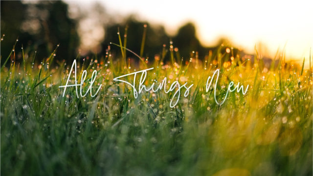 All Things New | A New Temple | John 2:13-25