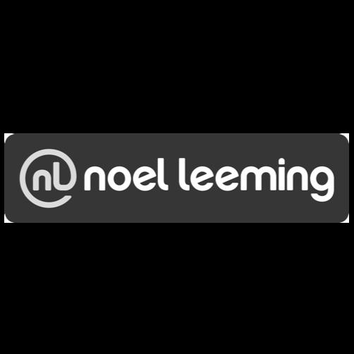 Noel-Leeming