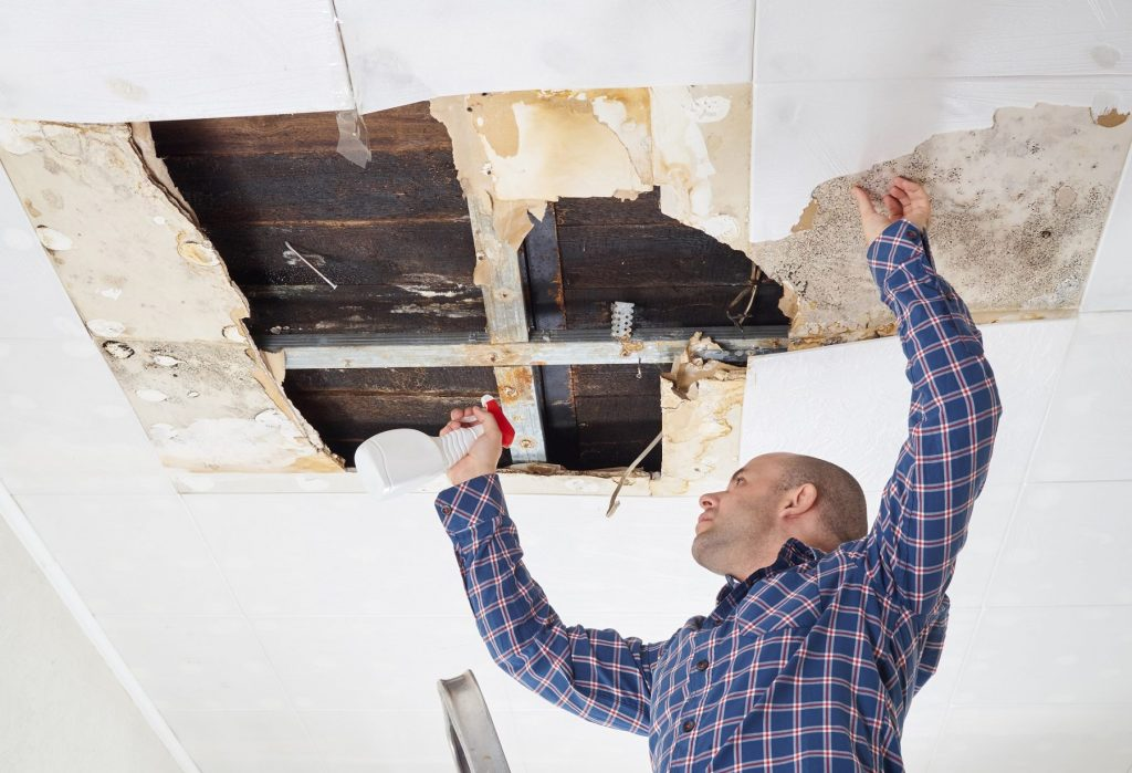 renovation health risks