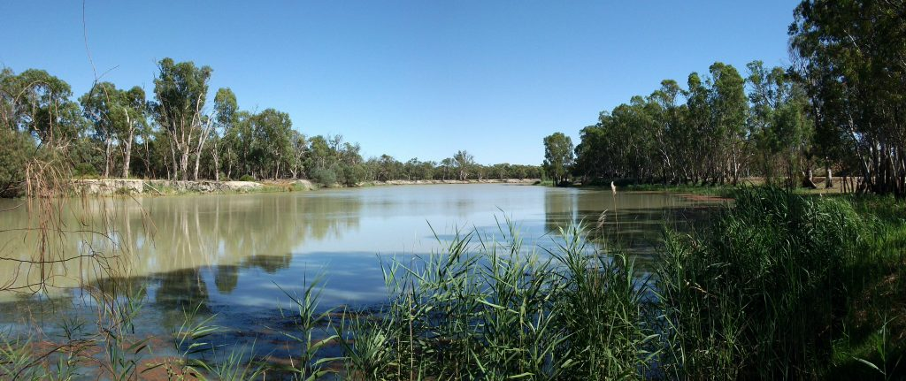 The Murray River from Loxton, South Australia